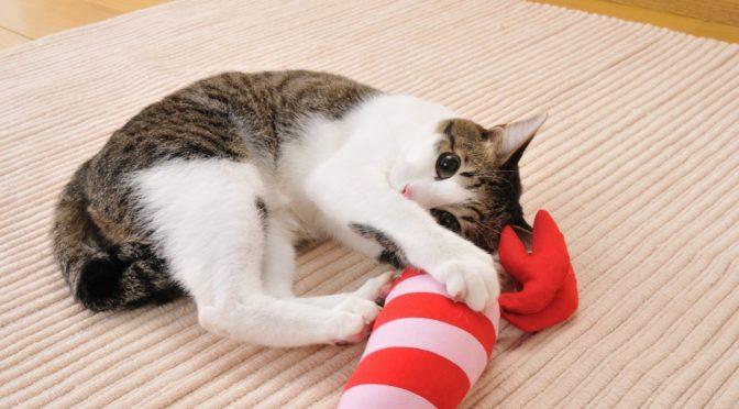ねこあつめコラボもあるよ♪猫の大好きなおもちゃ「けりぐるみ」がとっても可愛い♪