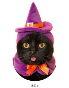 猫のかぶりもの,ハロウィン,魔女