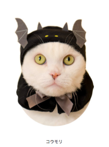 猫のかぶりもの,ハロウィン,コウモリ