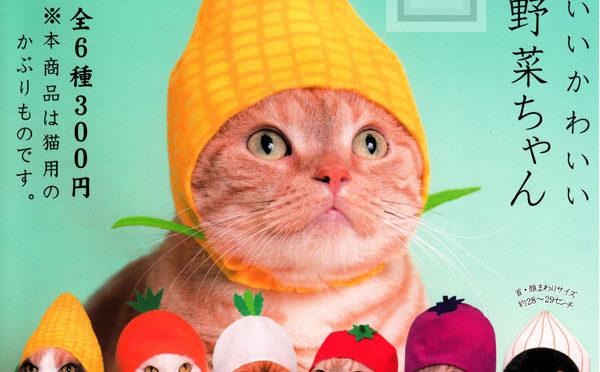 【お野菜に変身ニャ!】猫のかぶりものシリーズが可愛すぎる♪
